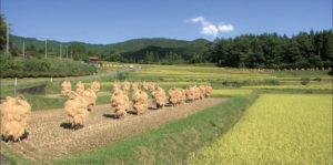 束稲山麓地域
