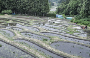いちのせきシェア農園 PlayFarm(一関市舞川)